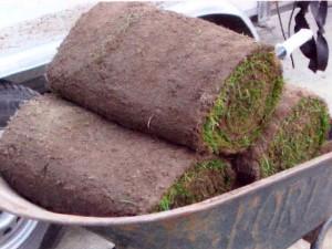 Gras op maat - Graszoden
