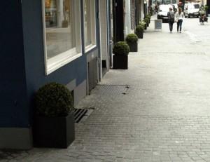 Buxusbollen Antwerpen